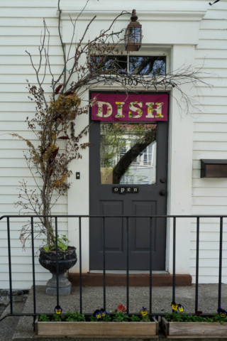 Dish, The Shopkeepers Guide to Hudson
