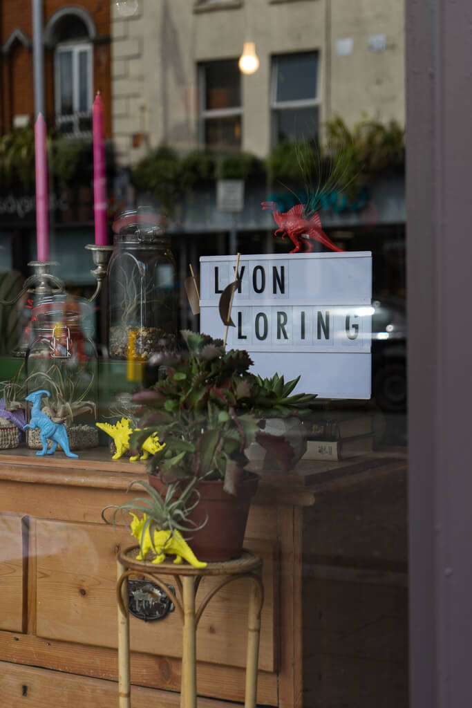 Lyon Loring, The Shopkeepers Going Places Guide to Smithfield & Stoneybatter