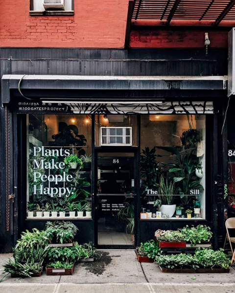 The Sill, Plant Shop, New York