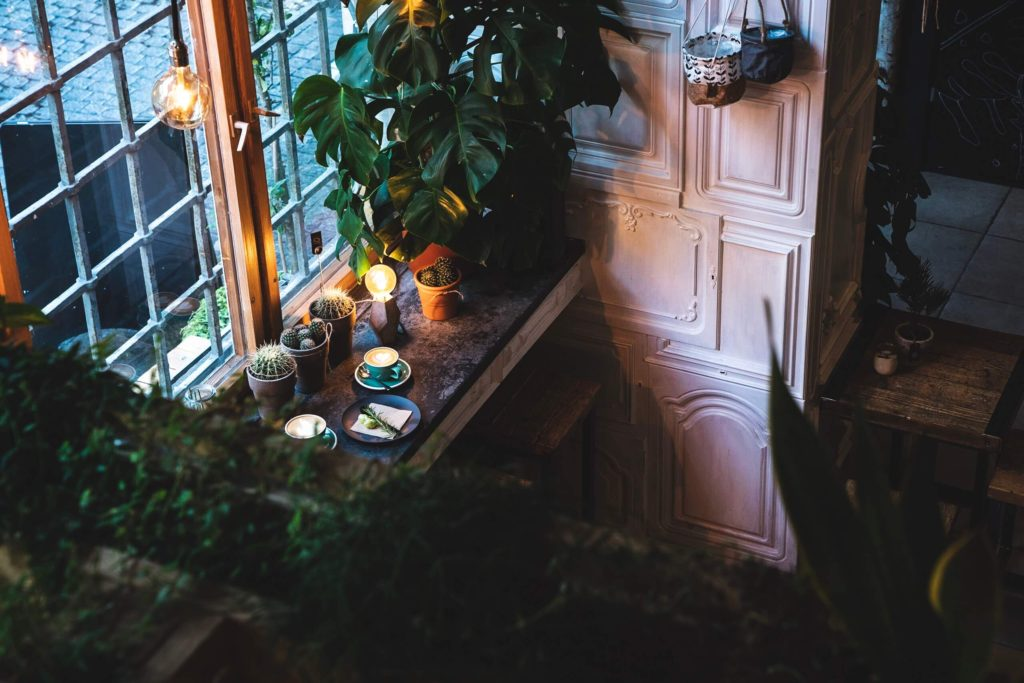 The Greens, coffee and plant shop Berlin