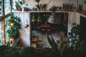 The Greens, Coffee & Plant shop, berlin