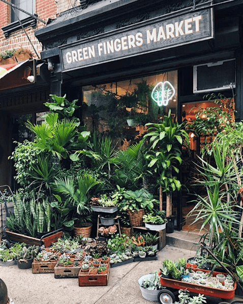Green Fingers Market, Best New York Shops