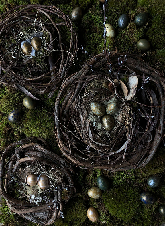 Nests at Hort and Pott, Oak Hill NY