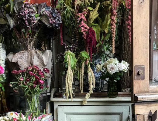 best flower plant shops 2019
