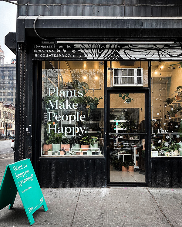 The Sill, best plant shops
